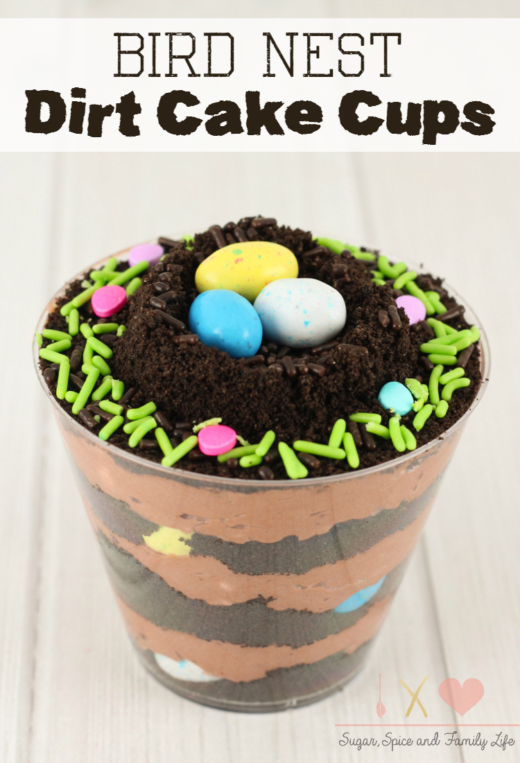 Bird Nest Dirt Cups