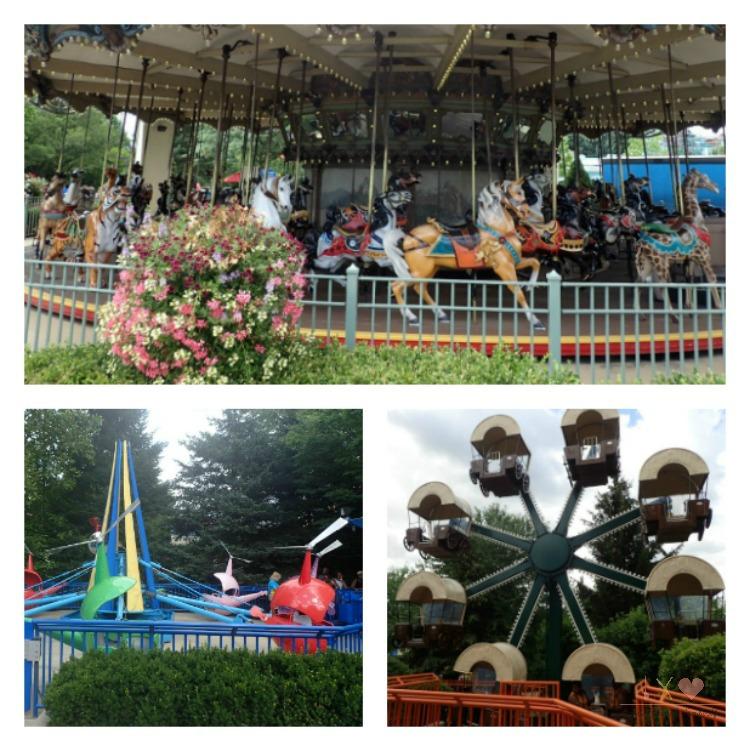 Dorney Park Rides