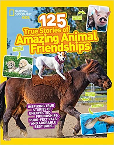 Amazing Animal Friendships