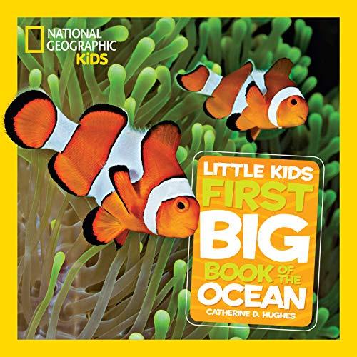 LITTLE KIDS FIRST BIG BOOK OF OCEAN